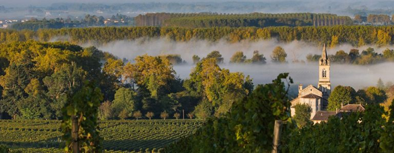 Bordeaux wines' appellations for beginners