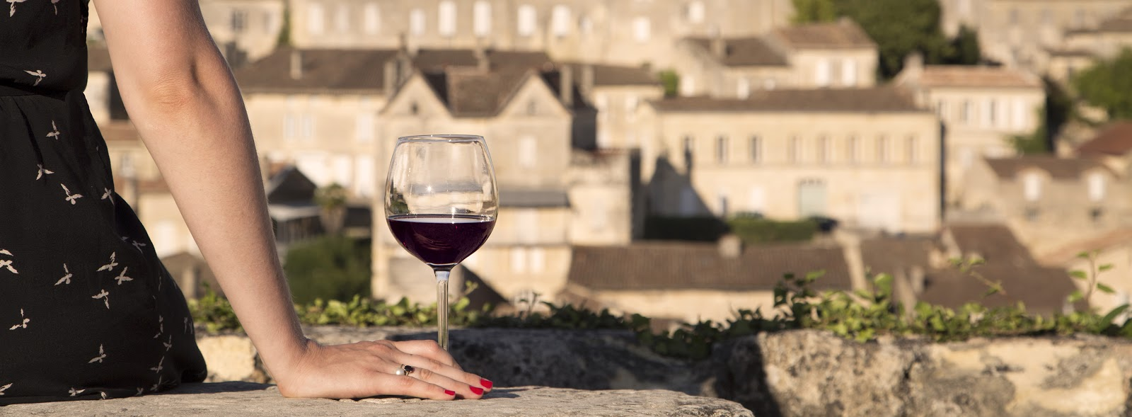 The wines of St-Émilion