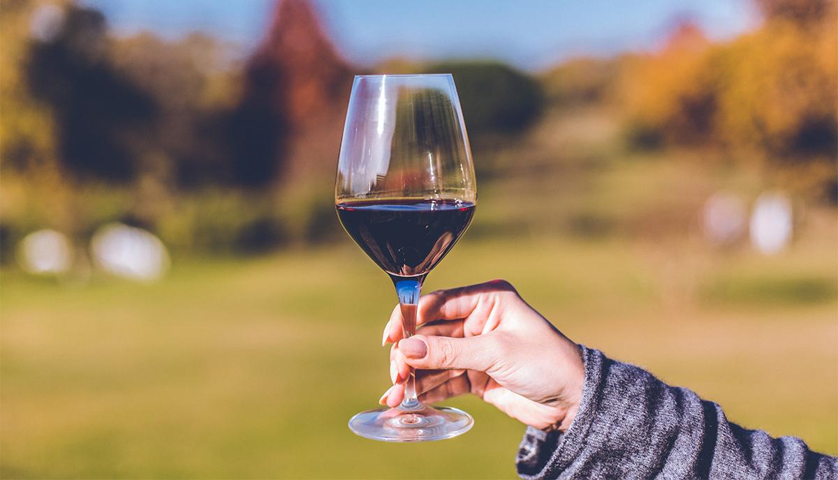 5 Bordeaux Weine die perfekt zu deinen Problemen passen