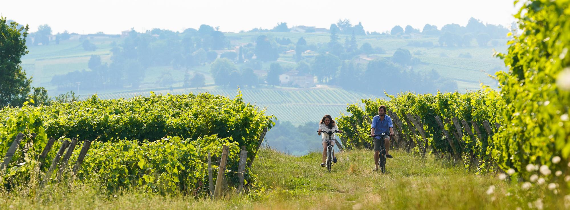 Bordeaux à vélo : Un week-end à vélo dans les vignes