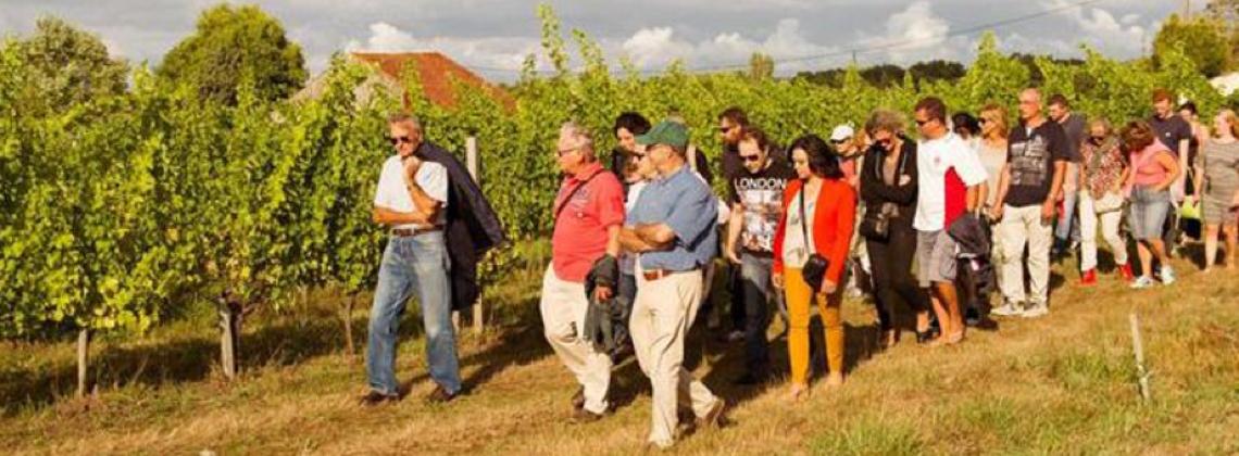 6 events om je zomer Bordeaux te kleuren