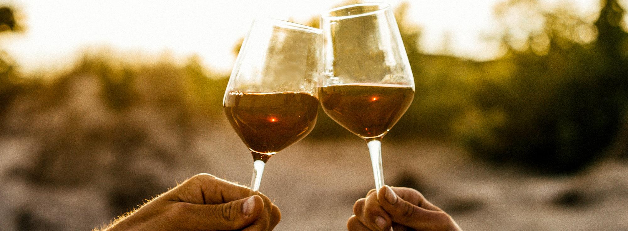 De wijnbeurzen van 2018 zijn er!