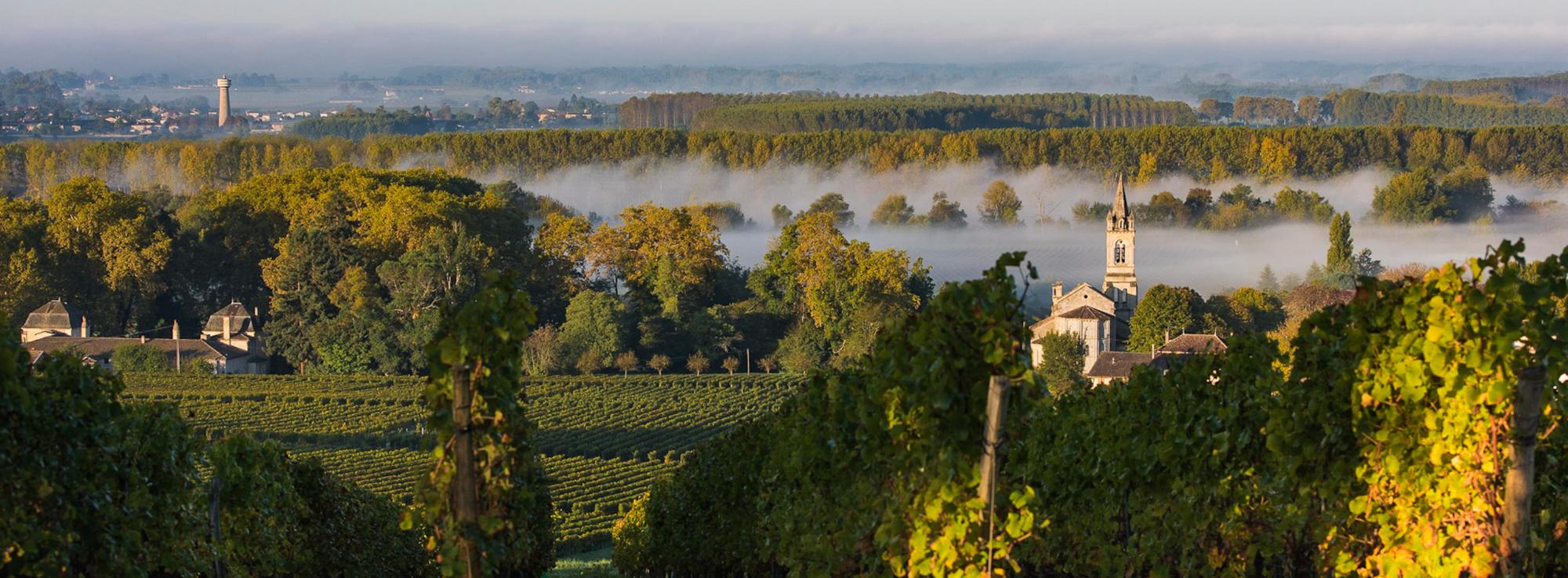 Makkelijke gids voor appellations uit Bordeaux